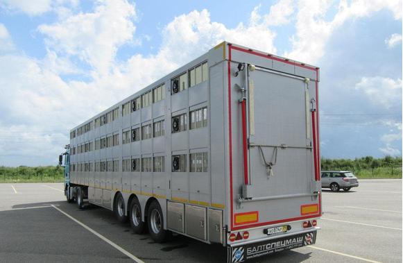 Полуприцеп скотовоз 94531 с двумя подвижными полами – фото 3